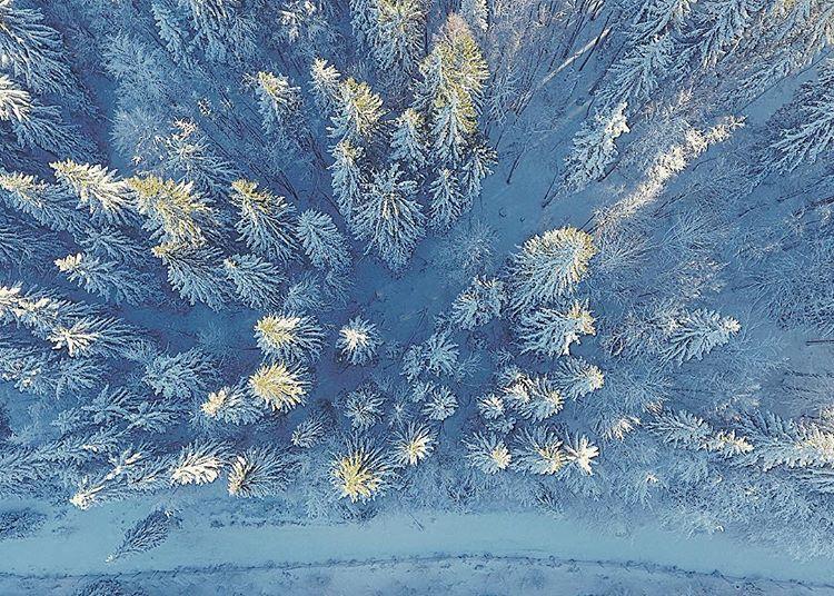 Golijske-jele Dronom iz vazduha do izuzetnih fotografija