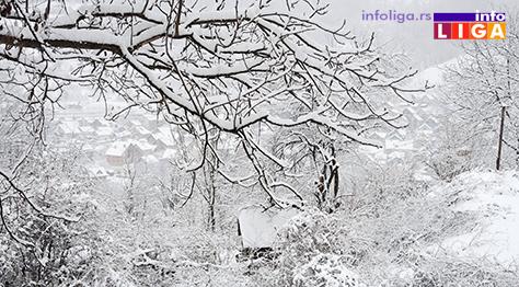 IL-sneg16-3 Iz Čikaga stigla pomoć u rodnu Ivanjicu
