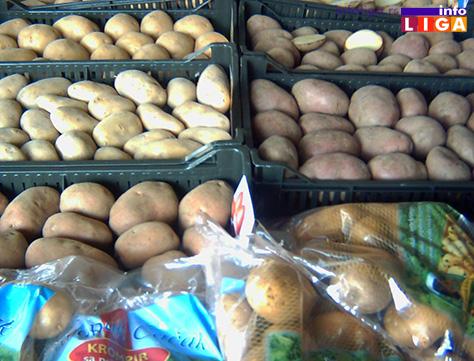 IL-krompir-ivanjica-izlozba Ivanjički krompir dobija oznaku geografskog porekla
