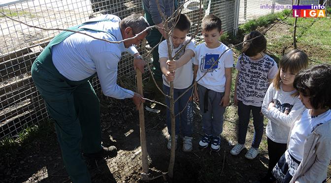Dan šuma obeležen sadnjom drveća za najmlađe