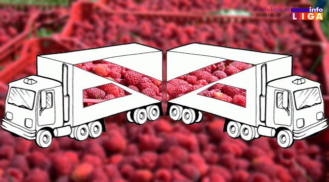 Srbija u ovoj godini izvezla 44.000 tona a uvezla 5.000 tona malina