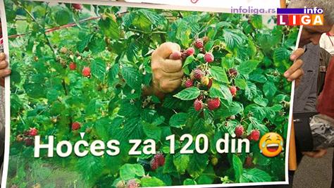 IL-protest-malinara-arilje-2017-3 Malinari traže od Vučića cenu od 225 dinara ili slede totalne blokade