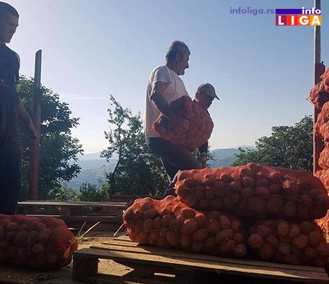 IL-krompir-humanitarka2 Dobri ljudi velikog srca donirali vagon krompira za gladne