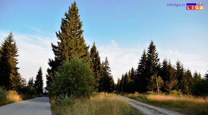 Golija postaje najzanimljivija destinacija u Srbiji