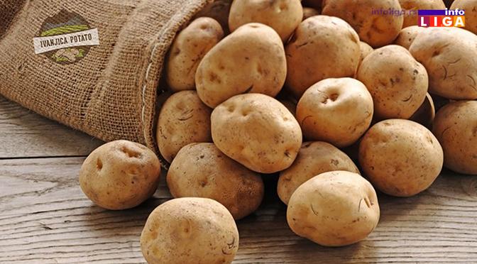 IL-krompir-ivanjica-potato Muke proizvođača ivanjičkog krompira (VIDEO)