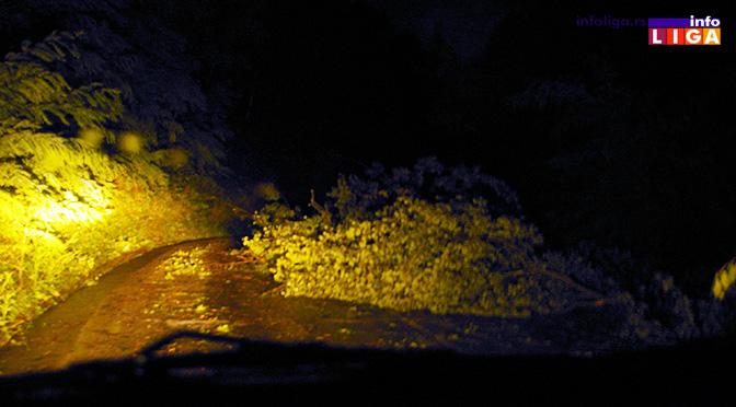 Olujni vetar čupao drveće od Prilika do Klepana