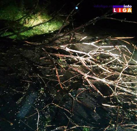 IL-nevreme-klepani-7 Olujni vetar čupao drveće od Prilika do Klepana