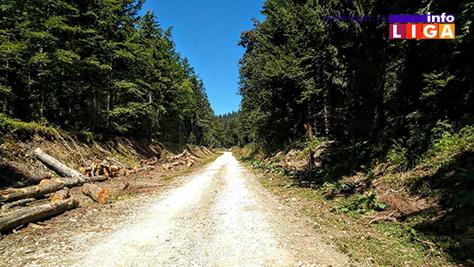 IL-put-golijska-reka Put Golijska Reka – Odvraćenica i dalje bez asfaltnog zastora