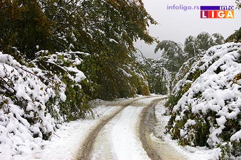 IL-sneg-golija-71017-2 Na Goliji teško prohodno, velike štete u voćnjacima (VIDEO)