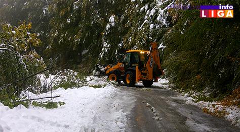 IL-sneg-golija-71017-3 Na Goliji teško prohodno, velike štete u voćnjacima (VIDEO)