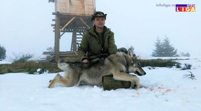 Odstreljen još jedan vuk na Čemernu