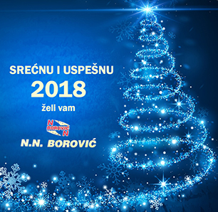 IL-cest-18-Borovic Novogodišnji odbojkaški trunir u Prilikama