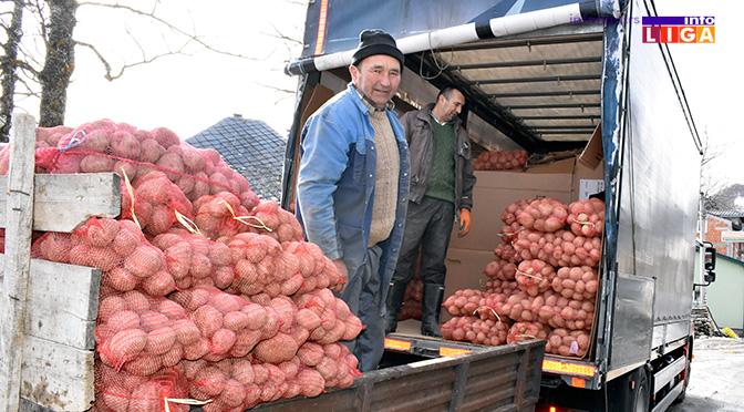 Muke proizvođača ivanjičkog krompira (VIDEO)