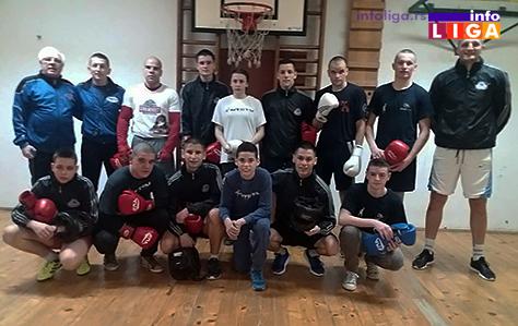 IL-bokseri-2 Bokseri iz Lazarevca i Ivanjice na zajedničkim pripremama