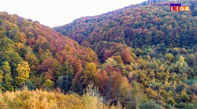 Ivanjičanima do sada vraćeno 603 hektara šuma i 28 objekata