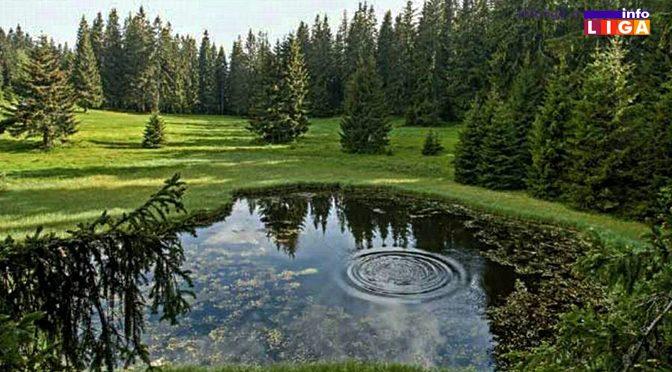 Prirodnom dragulju – Dajićkom jezeru preti nestajanje