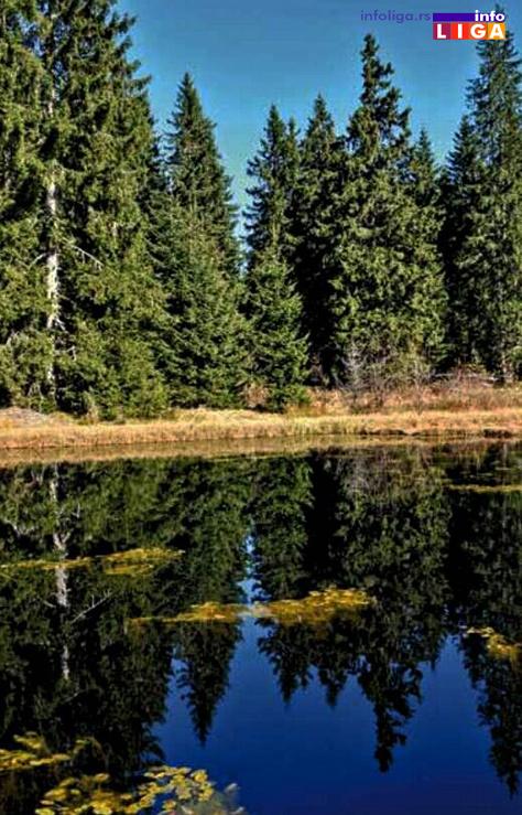 IL-dajicko-jezero2-arhiv-TOIvanjica Prirodnom dragulju – Dajićkom jezeru preti nestajanje