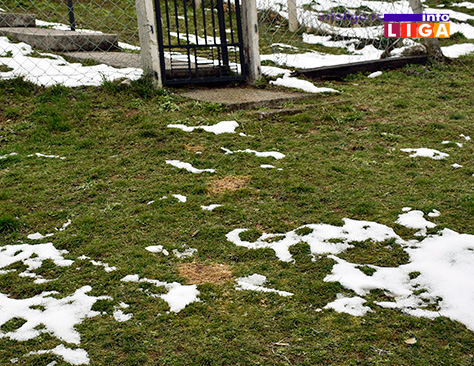 IL-trovanje-pasa-ostaci-kroazana STRAVIČNO - U naselju Bele njive leševi otrovanih pasa