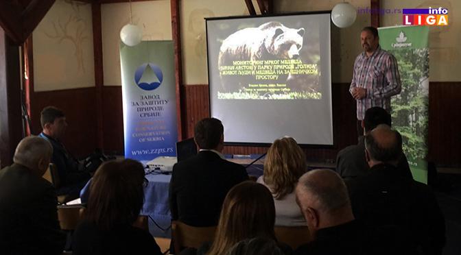 Monitoringom ustanovljeno da na Goliji živi oko dvadesetak medveda