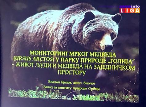 IL-mrki-medved-golija-monitoring2 Monitoringom ustanovljeno da na Goliji živi oko dvadesetak medveda