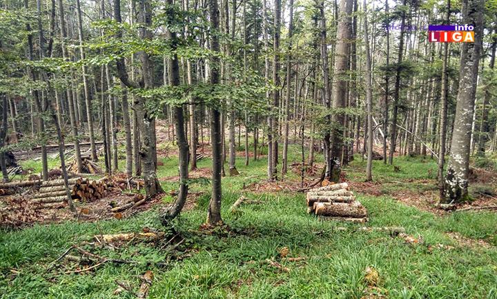 IL-osonicani-suma3 Osoničani biju bitku za vraćanje 179 hektara šuma i pašnjaka