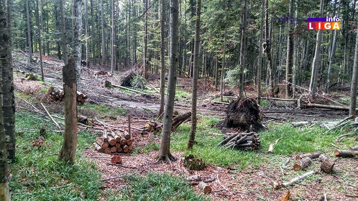IL-osonicani-suma4 Osoničani biju bitku za vraćanje 179 hektara šuma i pašnjaka