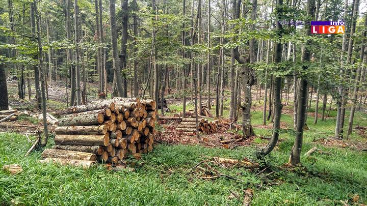 IL-osonicani-suma5 Osoničani biju bitku za vraćanje 179 hektara šuma i pašnjaka
