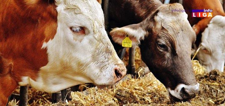 IL-kontrola-drzanja-zivotinja Počela kontrola uslova za držanje životinja