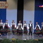 Svečana akademija prijateljstva Rostova Velikog i Ivanjice (VIDEO)