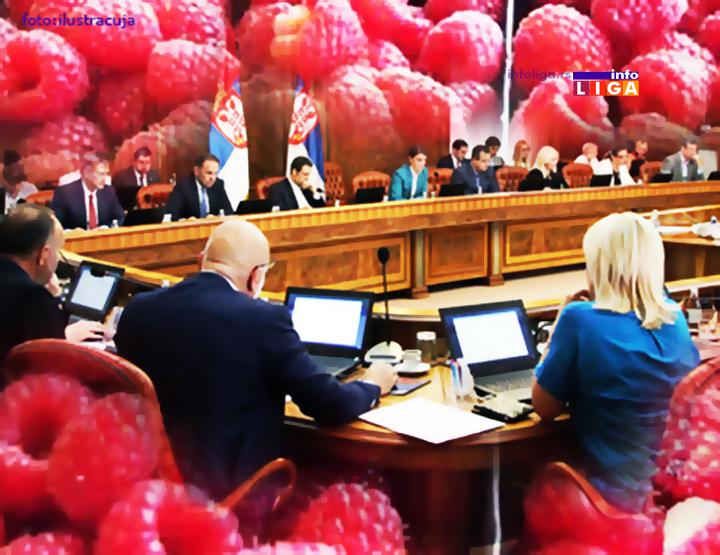 IL-radna-grupa-malina-ostavke Članovi Radne grupe za malinu podnose ostavke