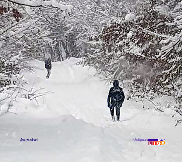 IL-kovilje-sneg Ivanjičane ponovo zatrpao sneg, ali se mečke bez problema šetaju putevima