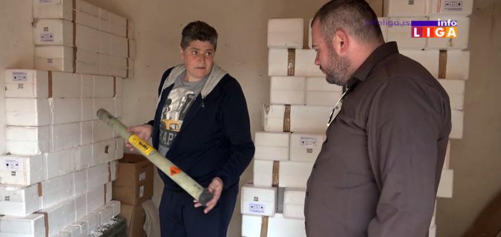 IL-protiv-gradna-zastita-sjenica UDAR NA GRAD - Ivanjica spremna za borbu sa nevremenom (VIDEO)