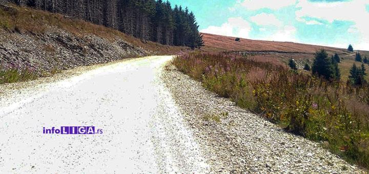 IL-put-gol-reka-odvracenica-tender Raspisan tender za izgradnju puta Golijska Reka – Preko Brdo - Odvraćenica