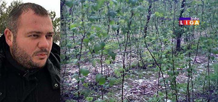 IL-vanredna-situacija-ivanjica-momcilo-mitrovic Na teritoriji opštine Ivanjica proglašena vanredna situacija