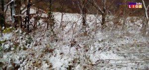 IL-Sneg-2020-300x142 Zabelelo se na brdima u okolini Ivanjice