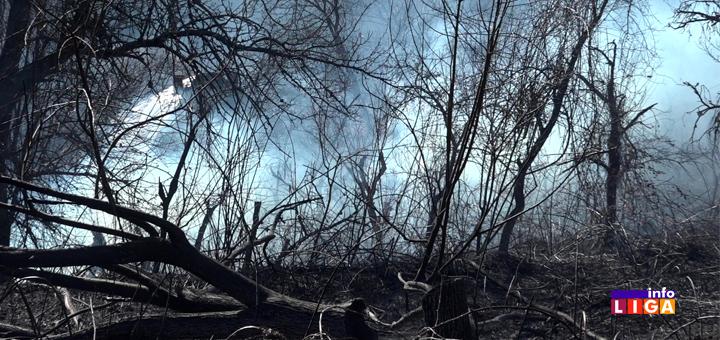 IL-Požar-na-Bratljevu- POŽAR U IVANJICI - Vatra i vetar besneli po zaseoku Rovine (VIDEO)