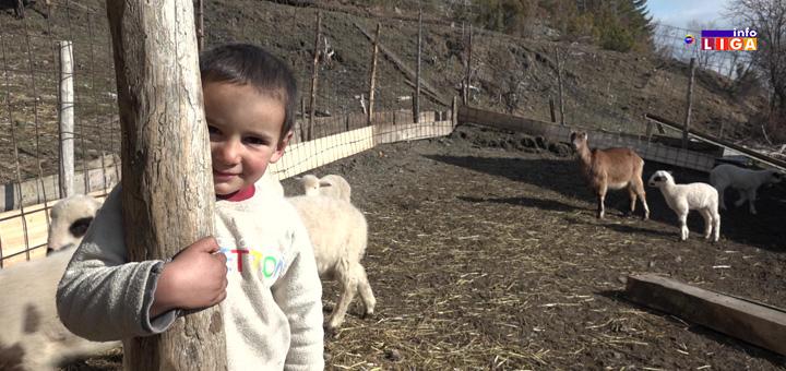 Oni će vas osvojiti: Devetoro Lukovića žive u divljini bogatiji od svih (VIDEO)