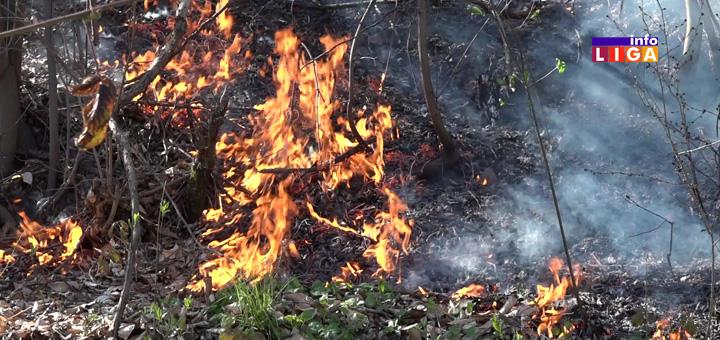Il-Pozar-Malovici-Darijeviceva-reka- Ivanjica - Gori šuma u naselju Malovići - Darijevićeva reka (VIDEO)