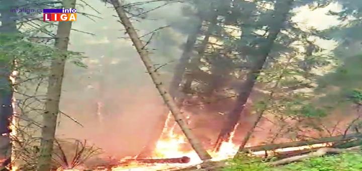 IL-Pozar-Golija- Kazne za namerno izazivanje požara od 10 000 do 300 000 dinara