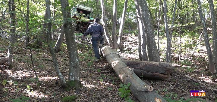 """IL-Drva-izvlacenje-3 Težak život drvoseča : """" Prekrstim se tri puta, pa u šumu da zaradim za hleb"""" (VIDEO)"""