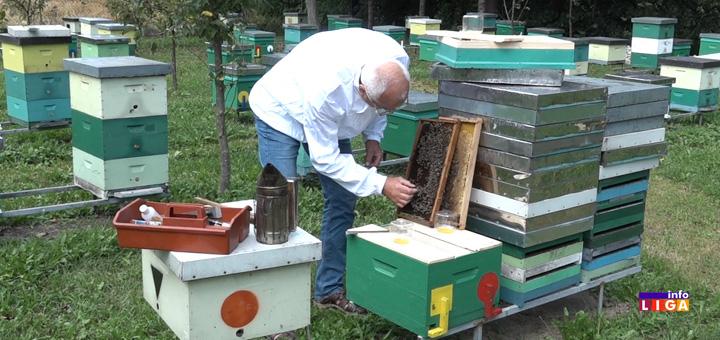 il-aco-vujovic-pcelar- Loša godina za pčelare: Cena meda dobra, ali prinosi četvorostruko manji (VIDEO)