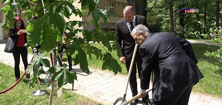 IL-sadnja-drveta-brazil- Ambasador Brazila u poseti Ivanjici - hiljadu stabala za ''šumu prijateljstva'' (VIDEO)