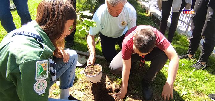 IL-io-ratko-sofijanic-sadnja-drveta- Ivanjica : Mladi izviđači sadnjom drveća obeležili Svetski dan zaštite životne sredine (VIDEO)